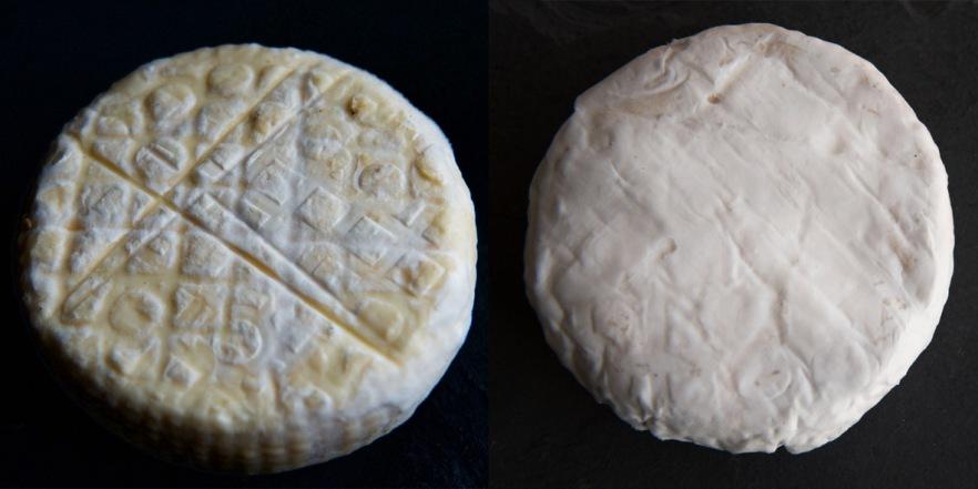 H Camembert